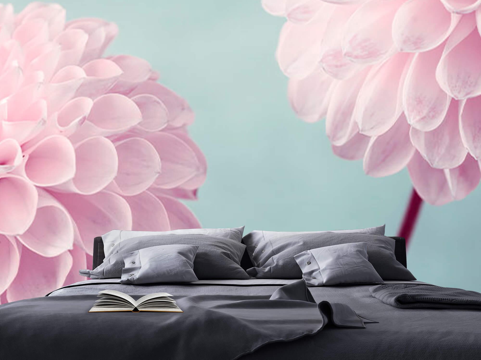 Two Dahlia Flowers 14