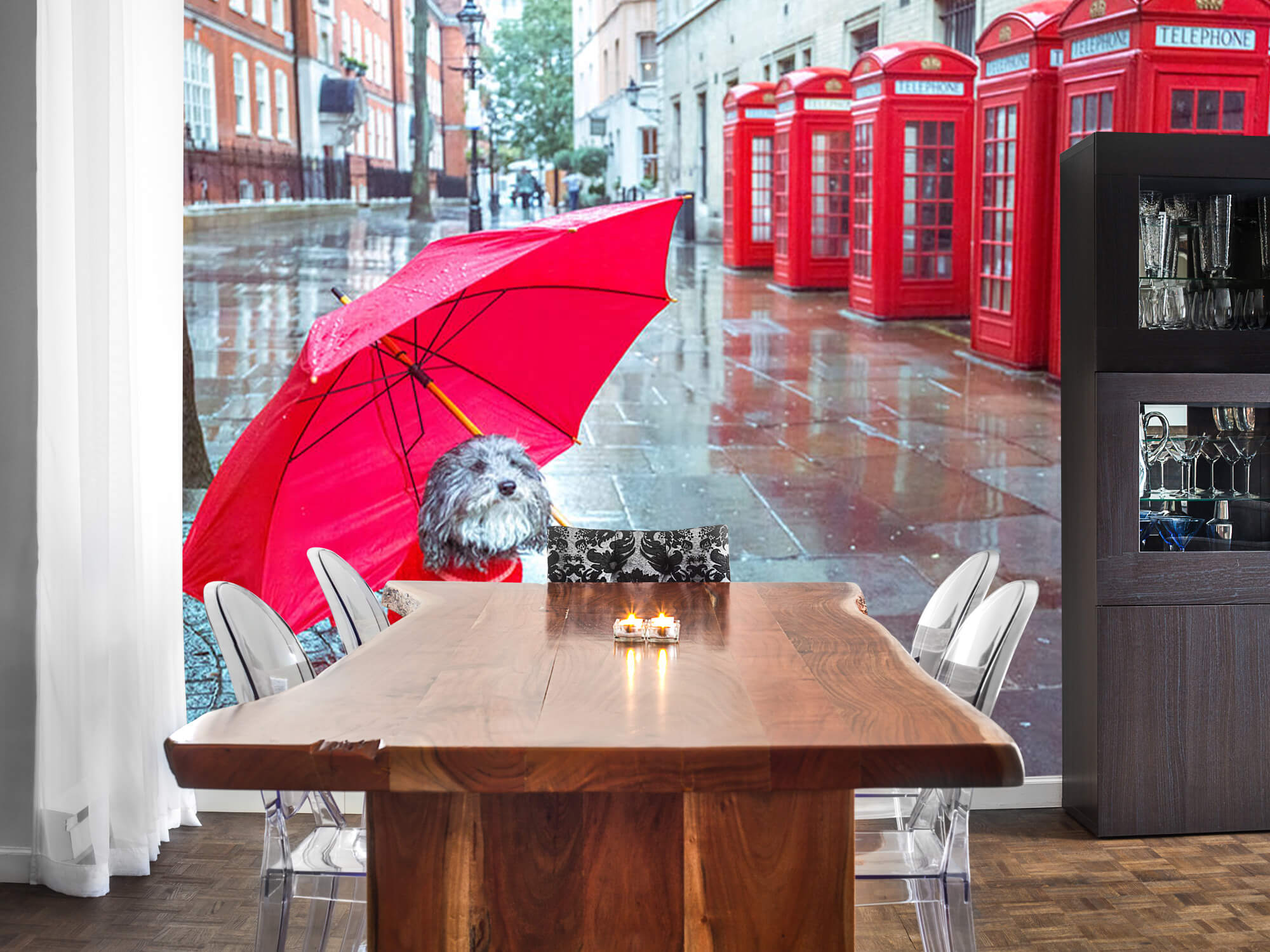 Dog with umbrella 4