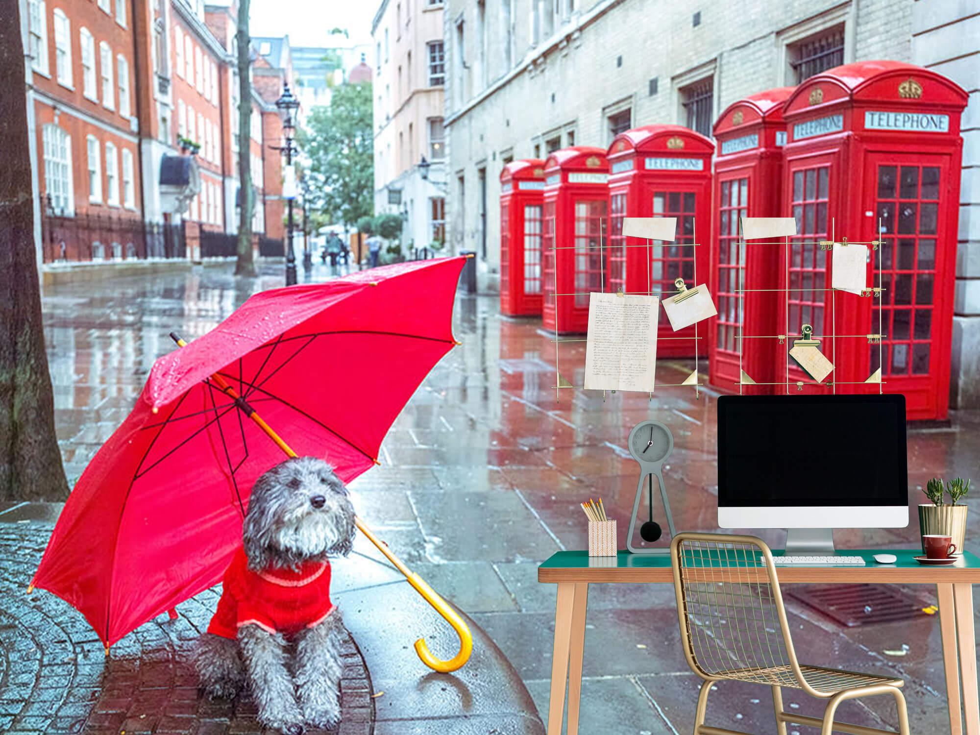 Dog with umbrella 7