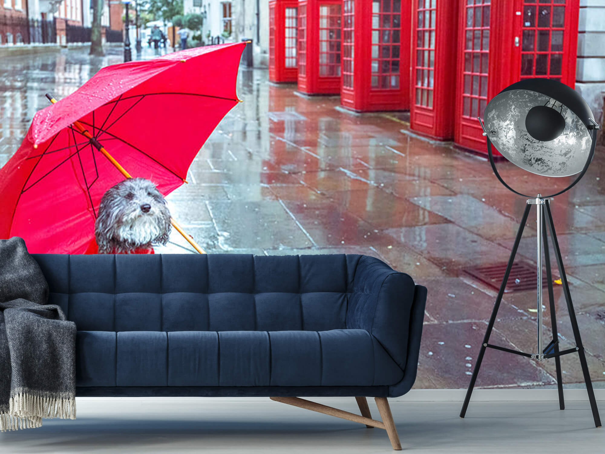 Dog with umbrella 9