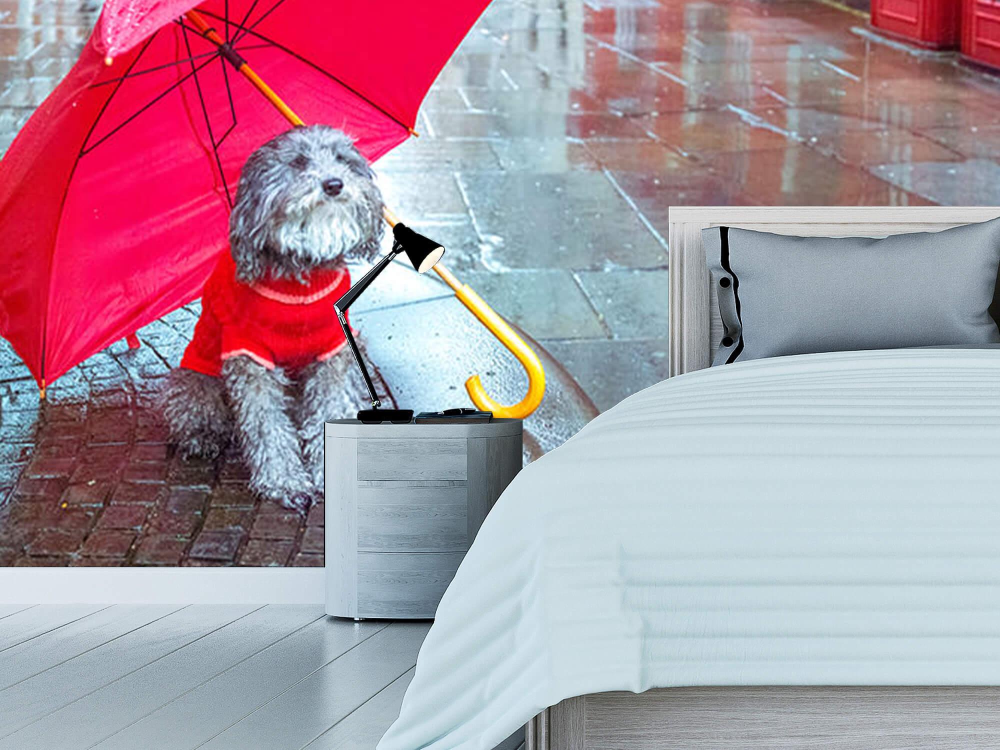 Dog with umbrella 11