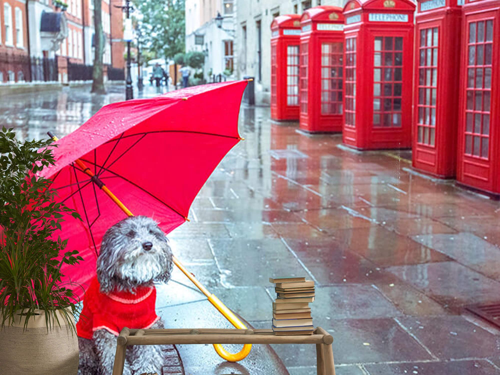 Dog with umbrella 14