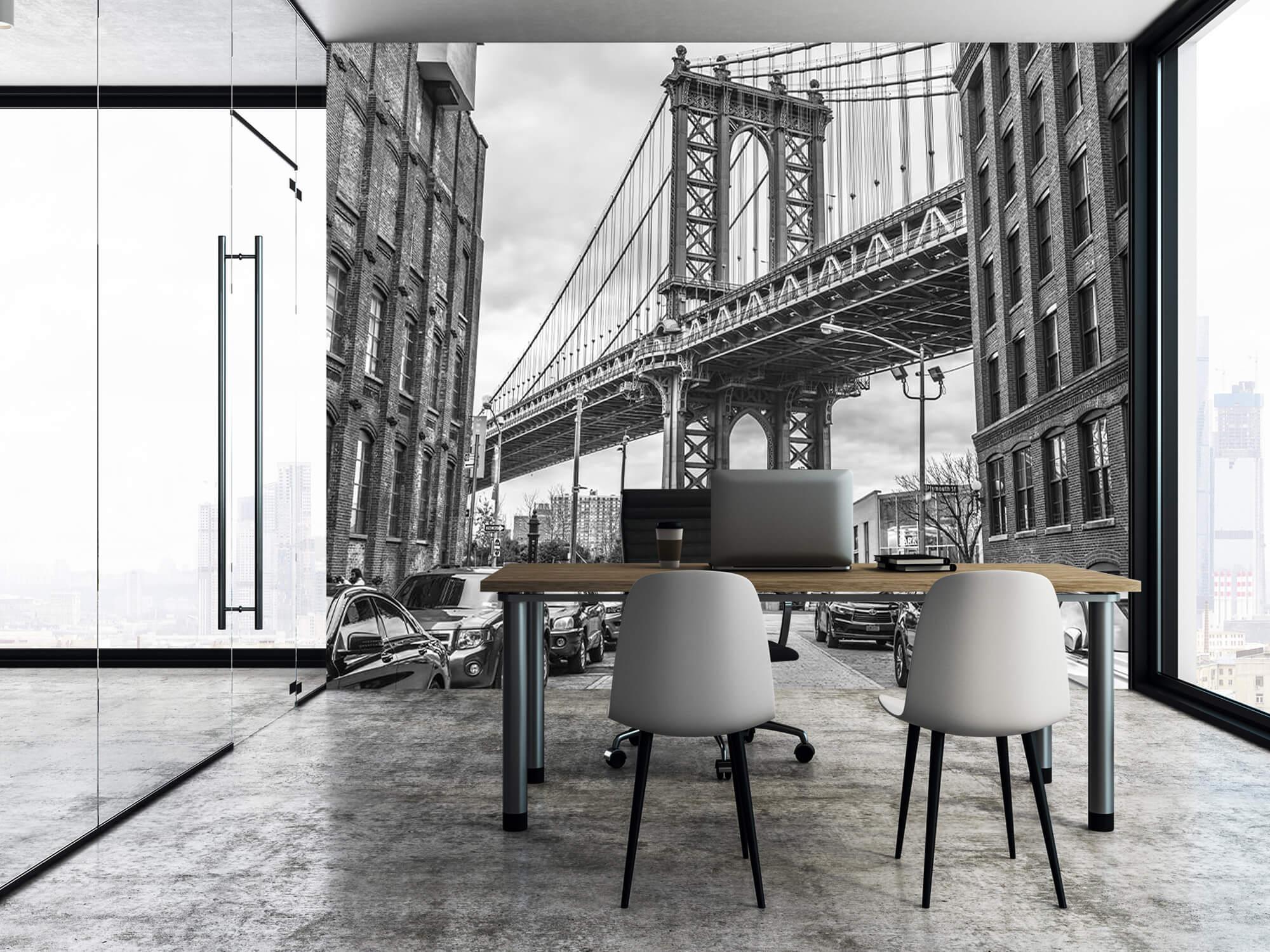 Manhattan Bridge 5