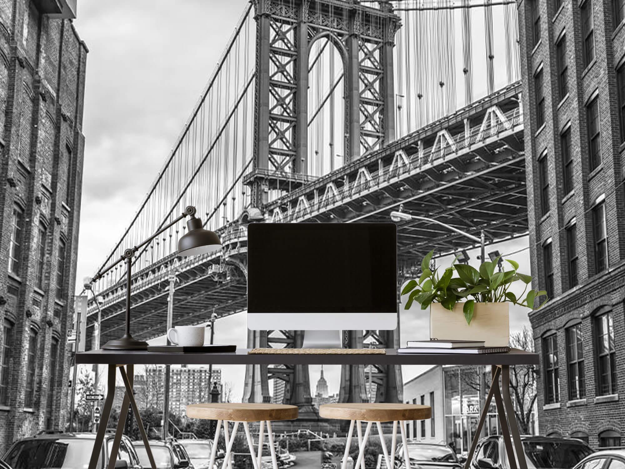 Manhattan Bridge 6
