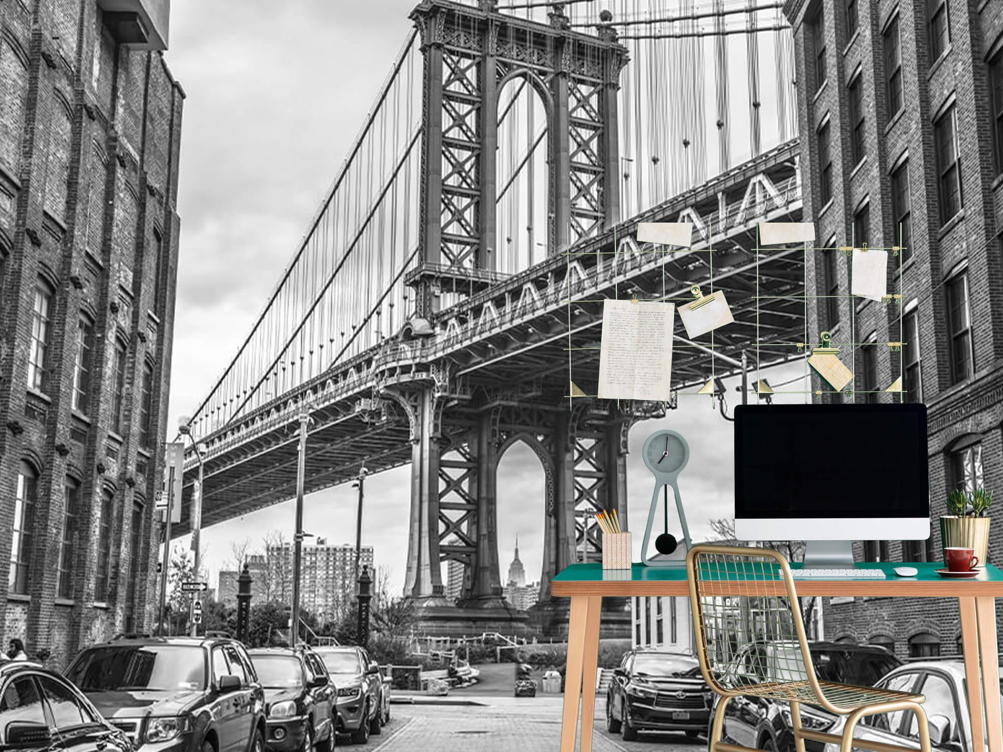 Manhattan Bridge 8