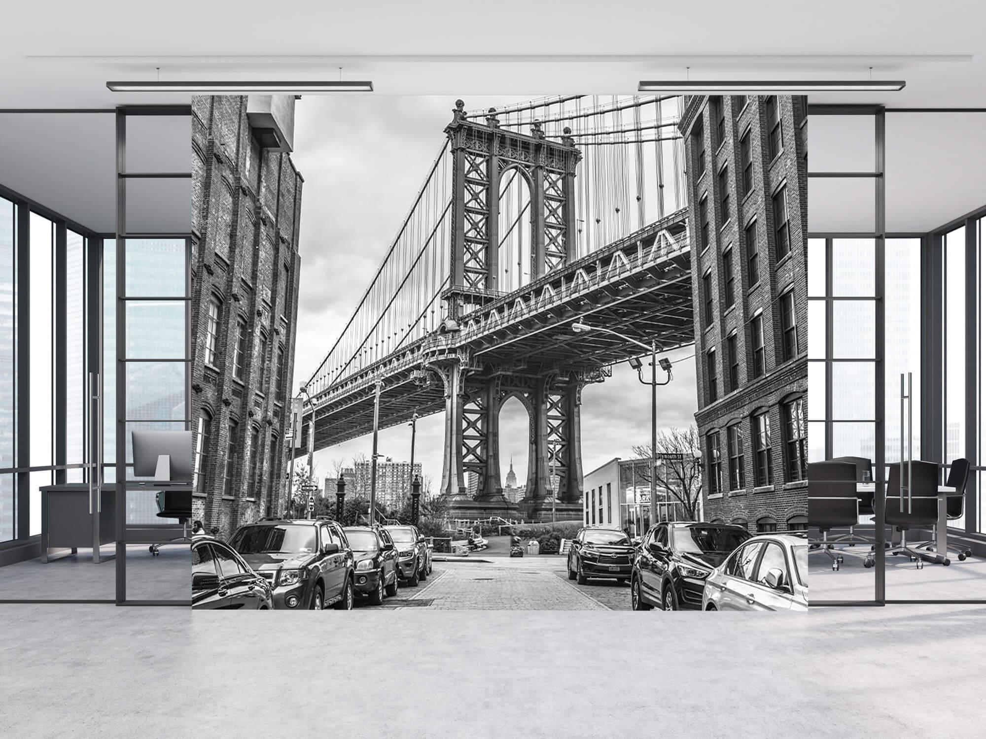 Manhattan Bridge 7