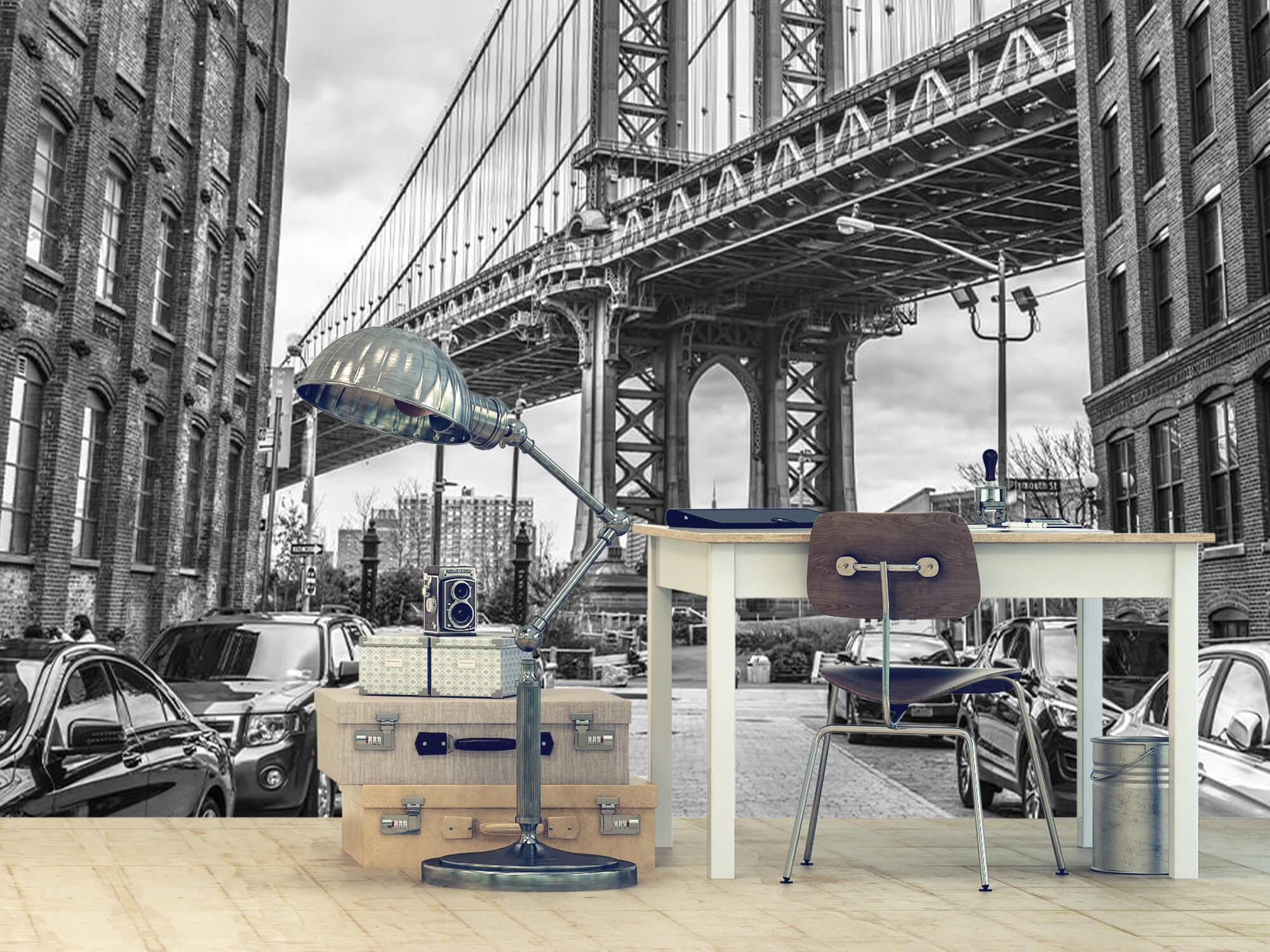 Manhattan Bridge 10