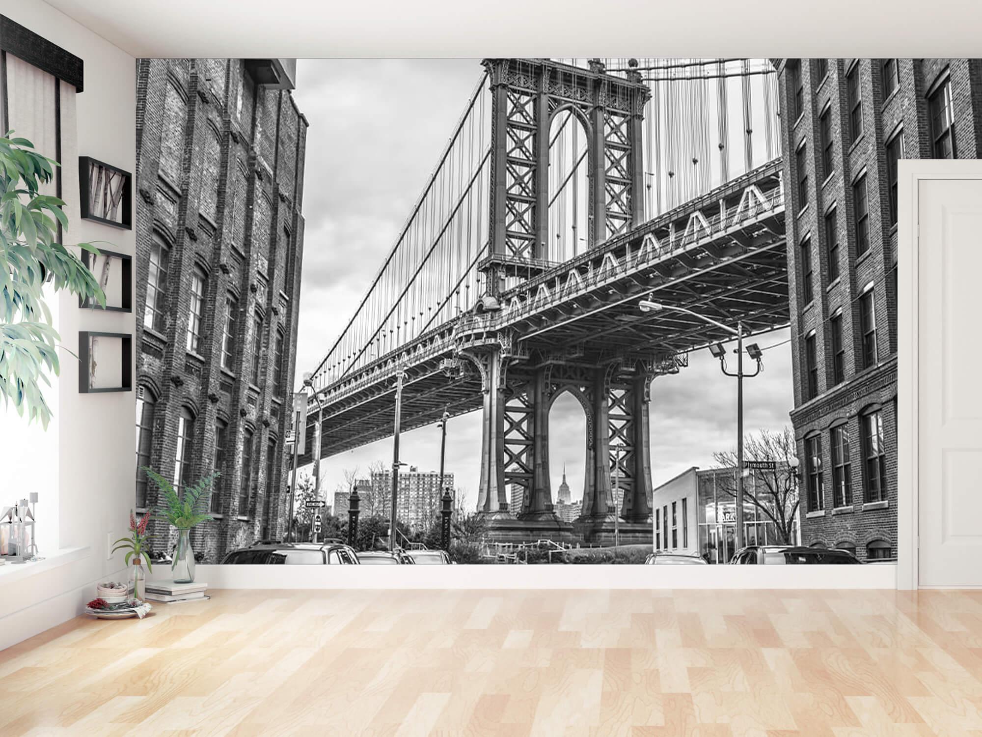 Manhattan Bridge 11
