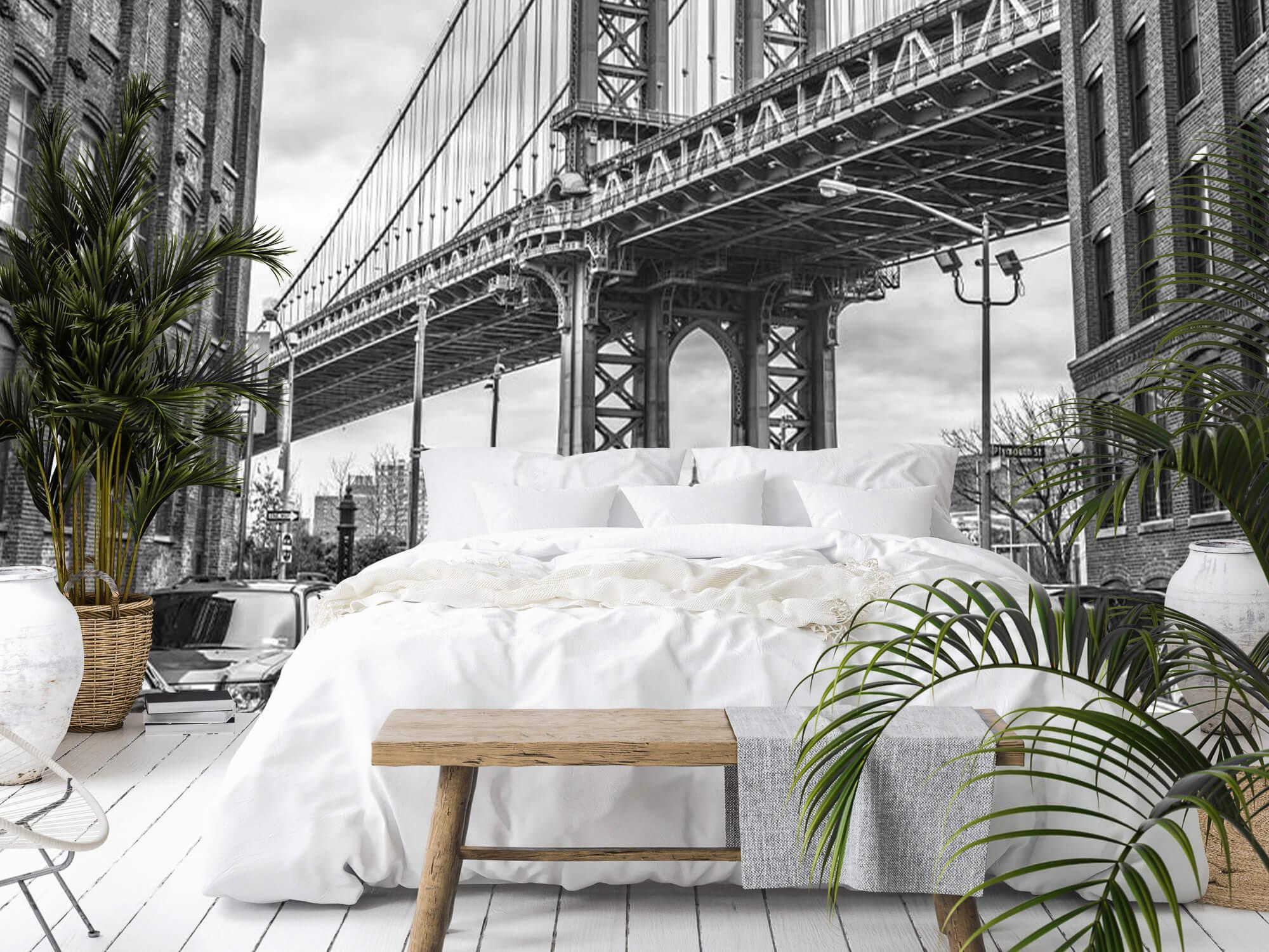 Manhattan Bridge 12