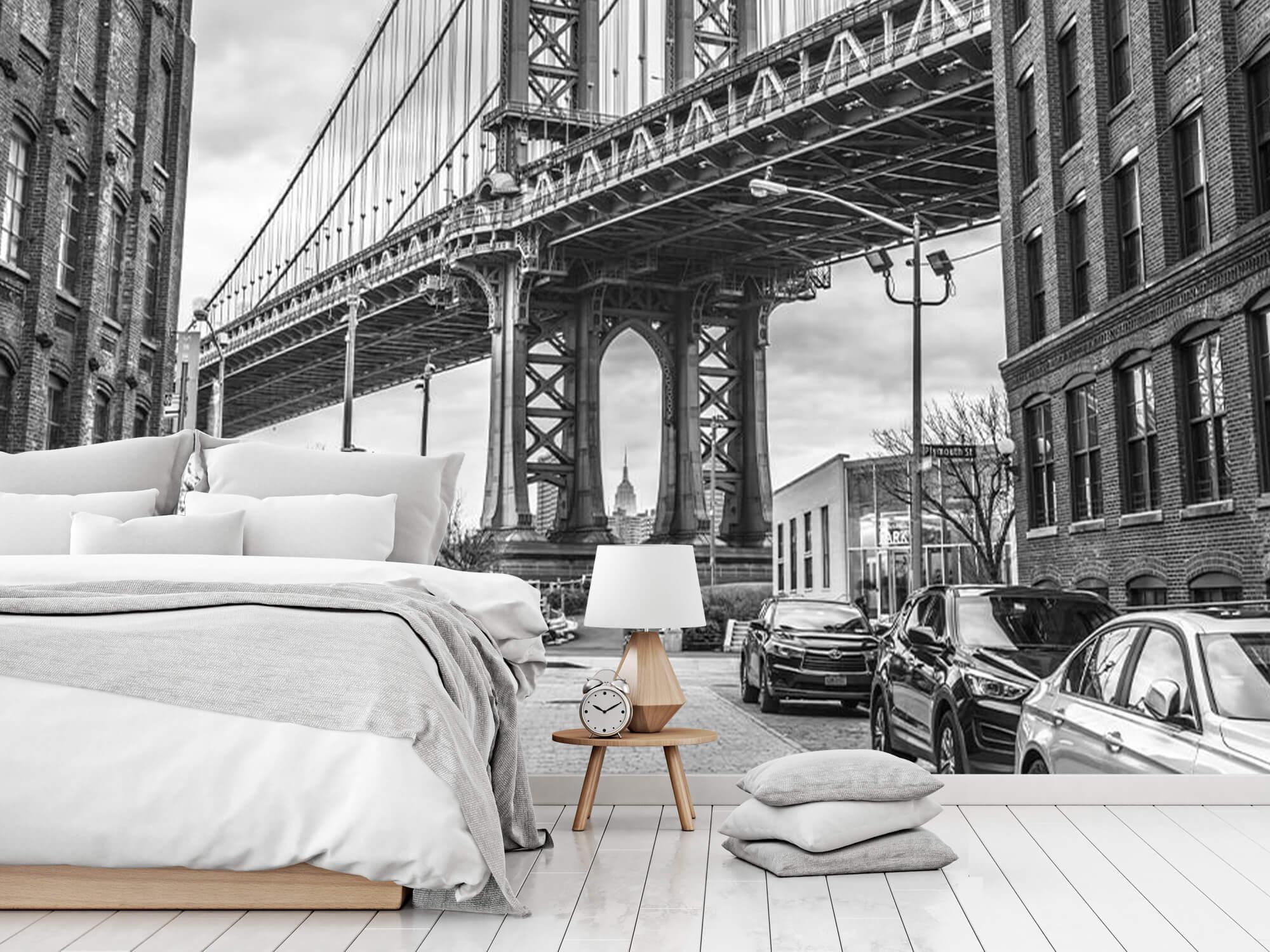 Manhattan Bridge 9