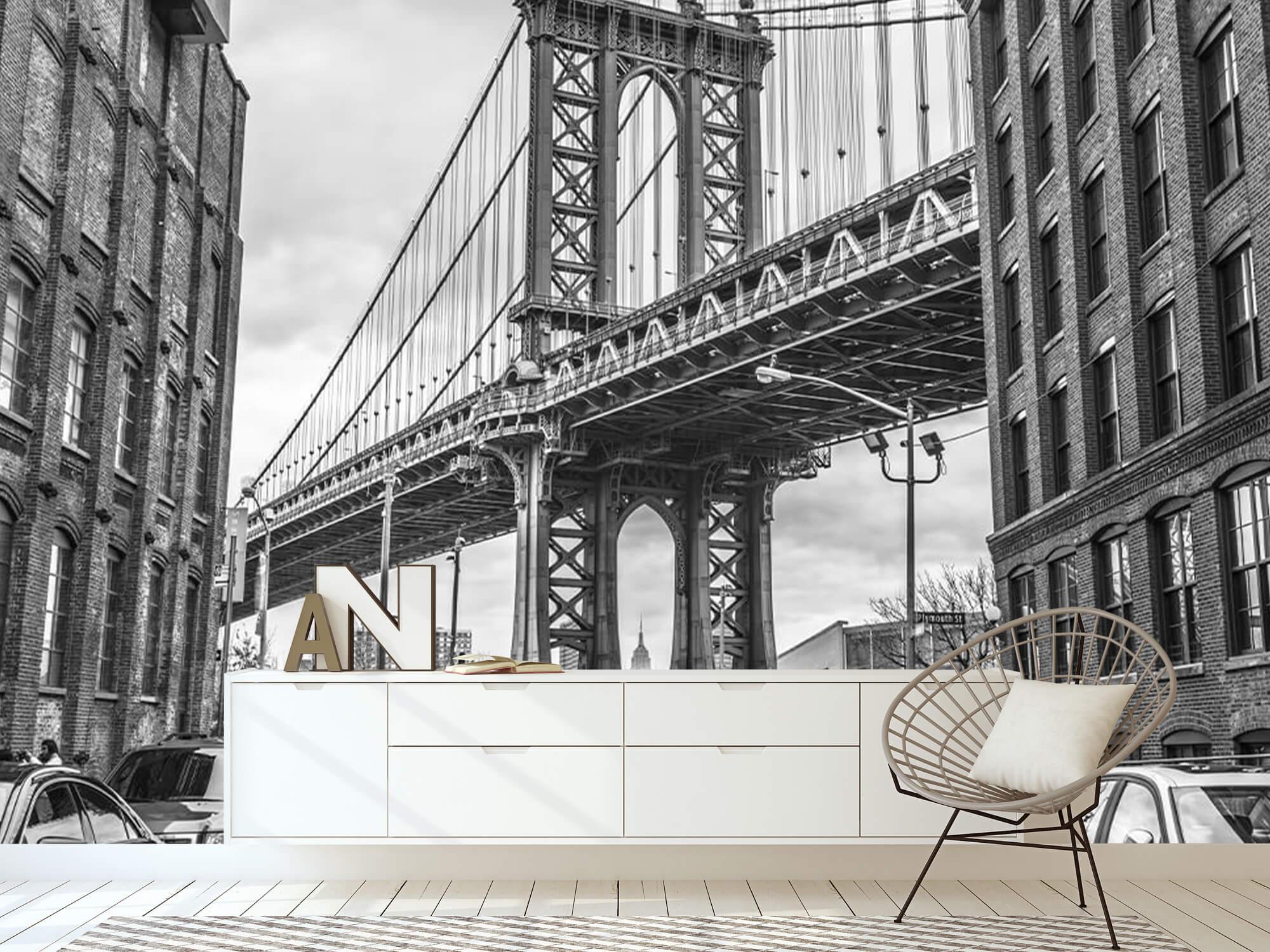 Manhattan Bridge 15
