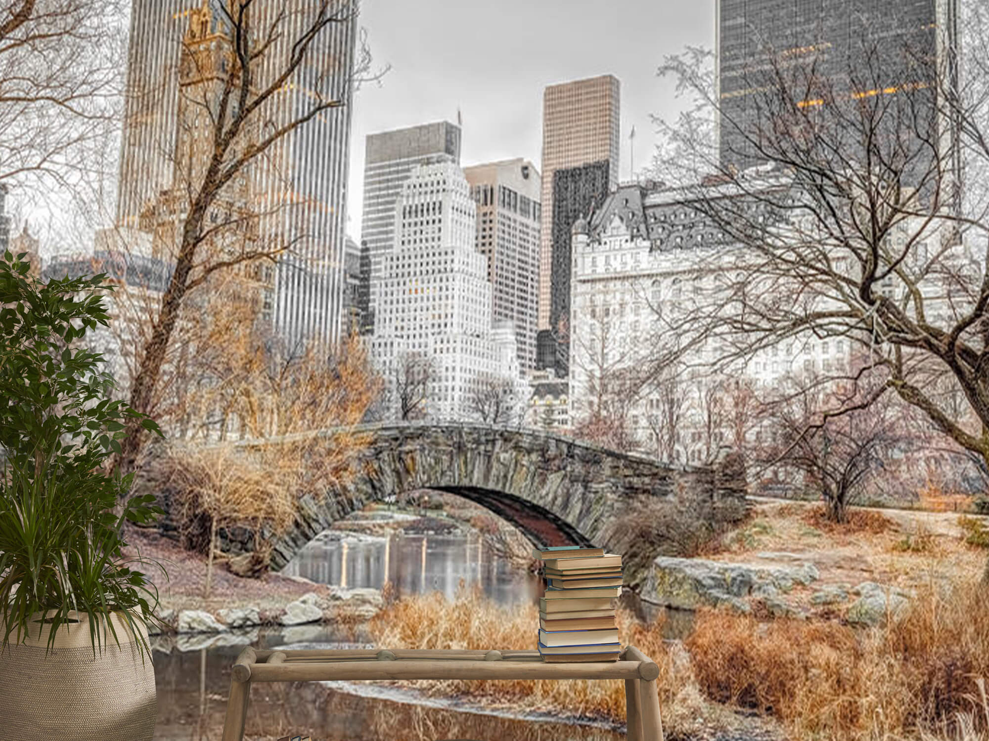 Central park in winter 14