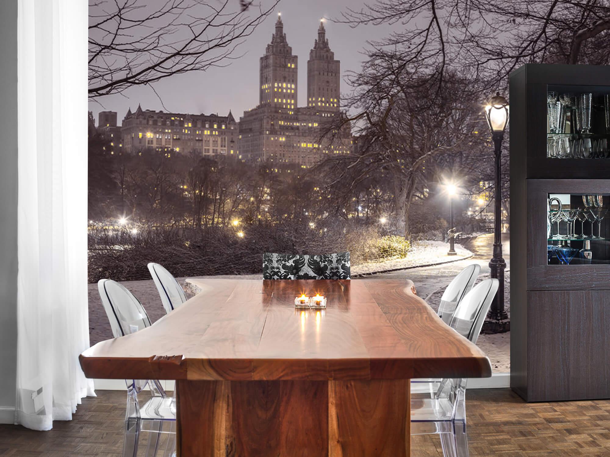 Snowy Central Park 1
