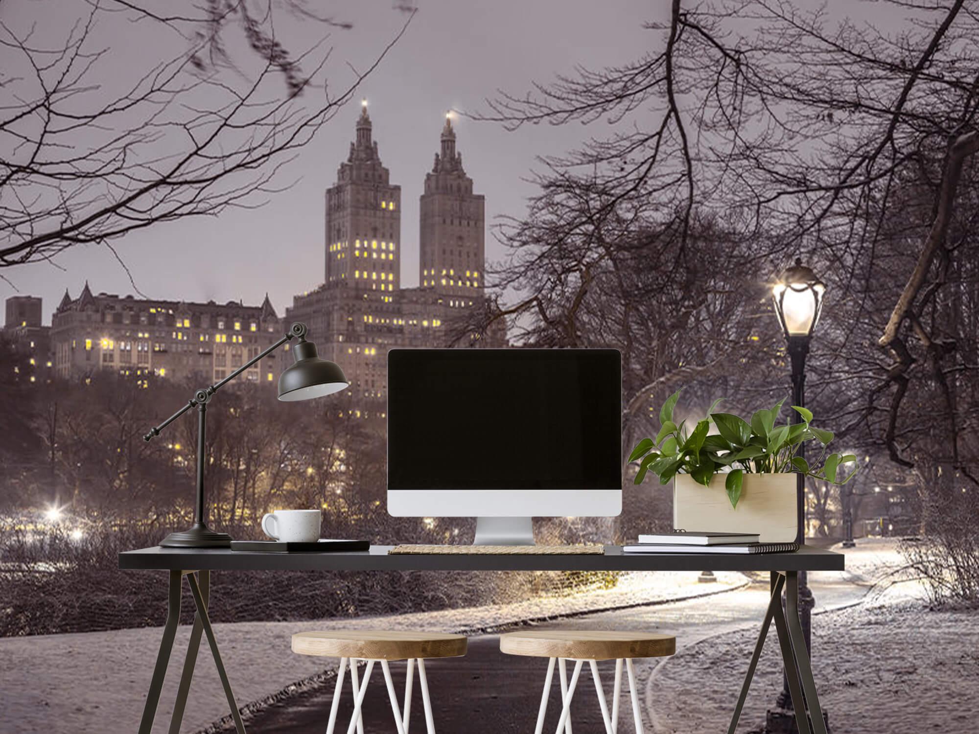 Snowy Central Park 6