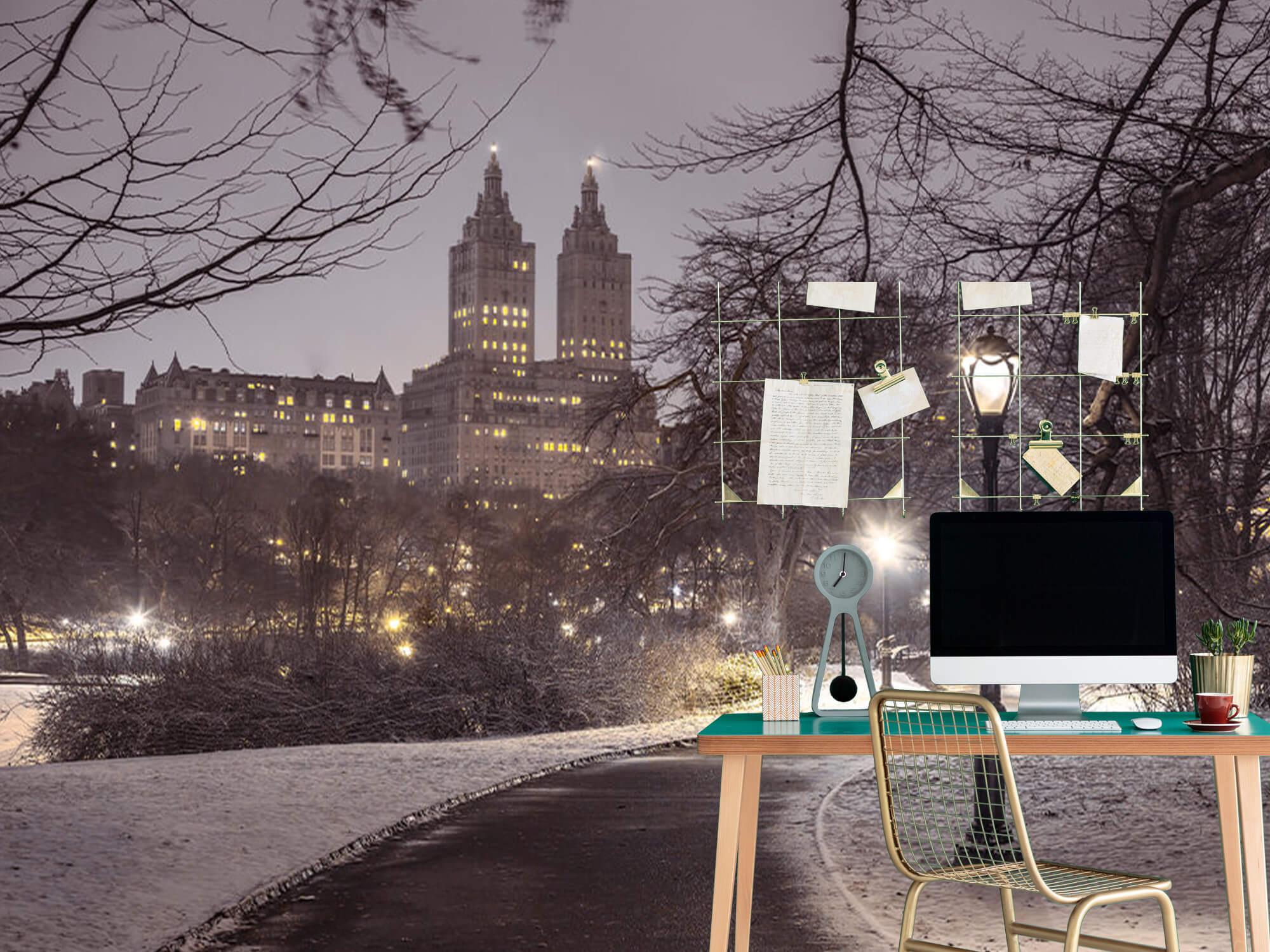 Snowy Central Park 7