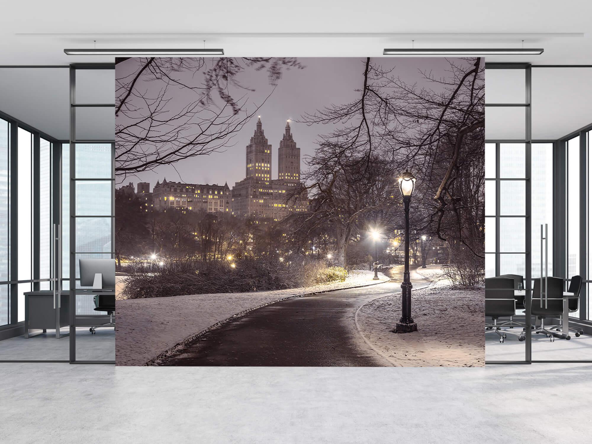 Snowy Central Park 10