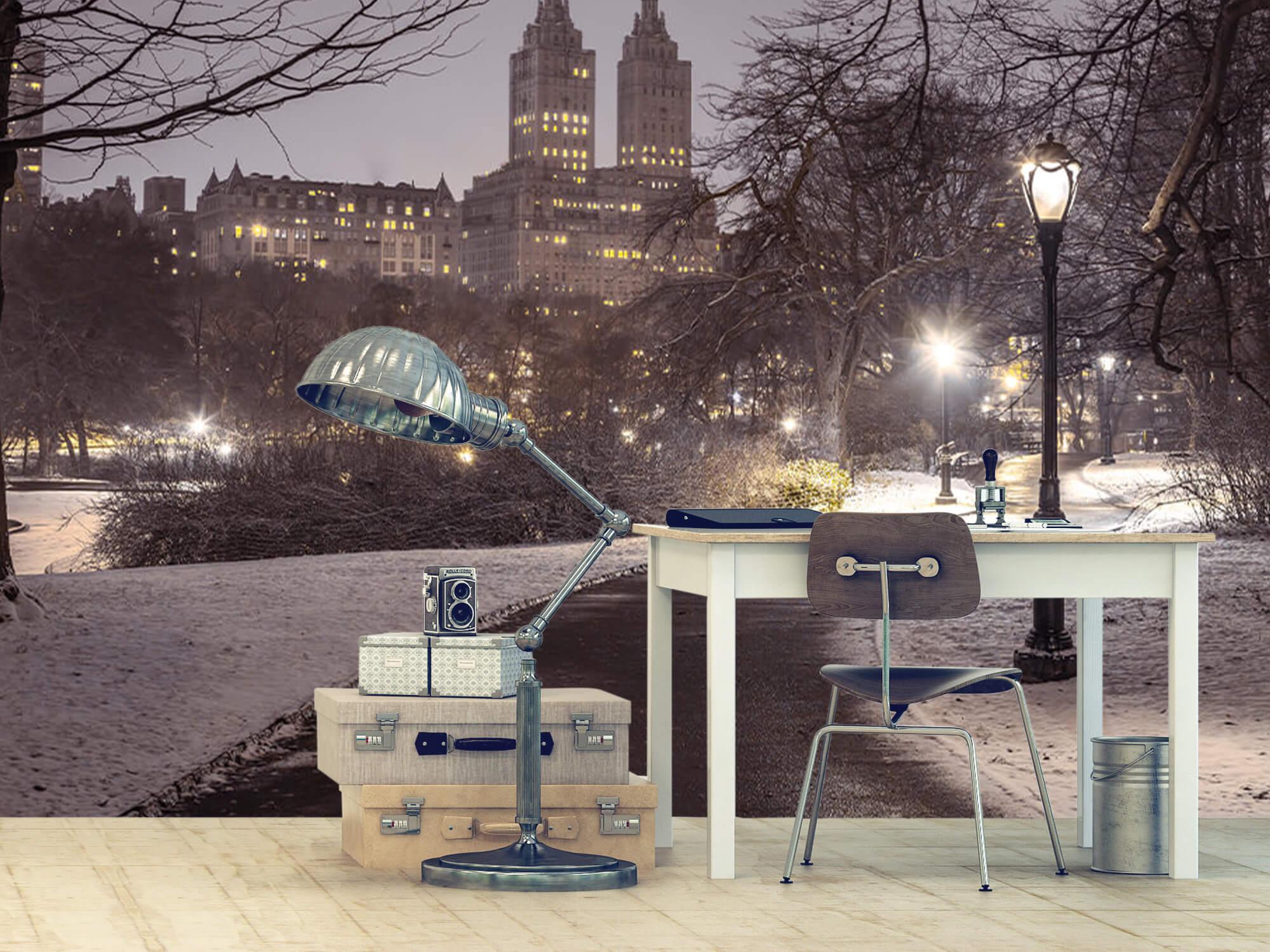 Snowy Central Park 2