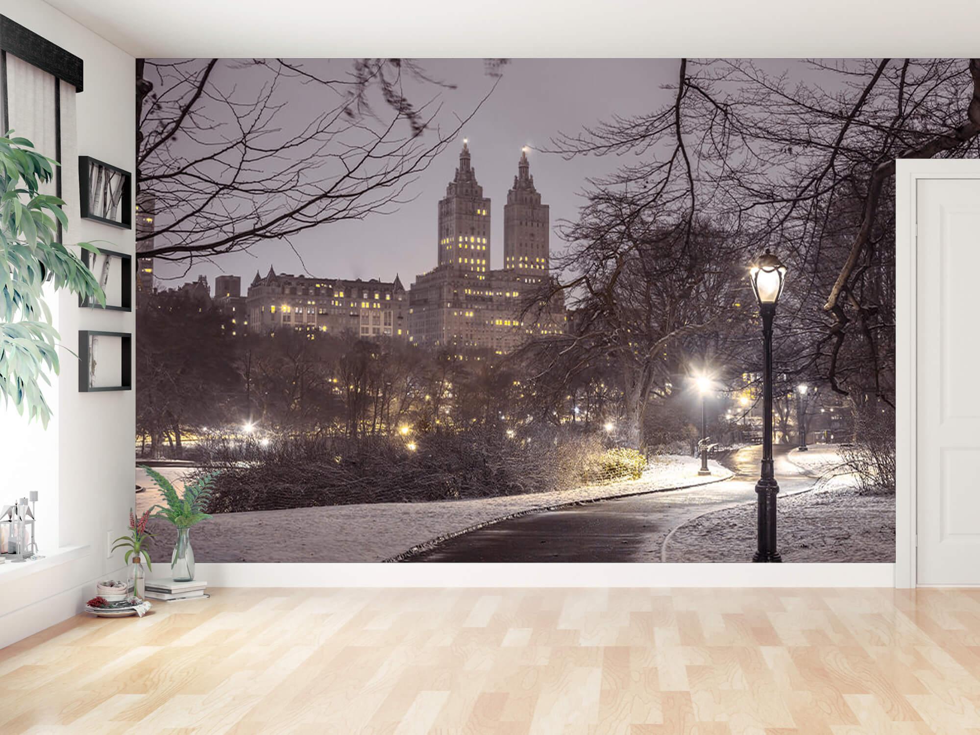 Snowy Central Park 3