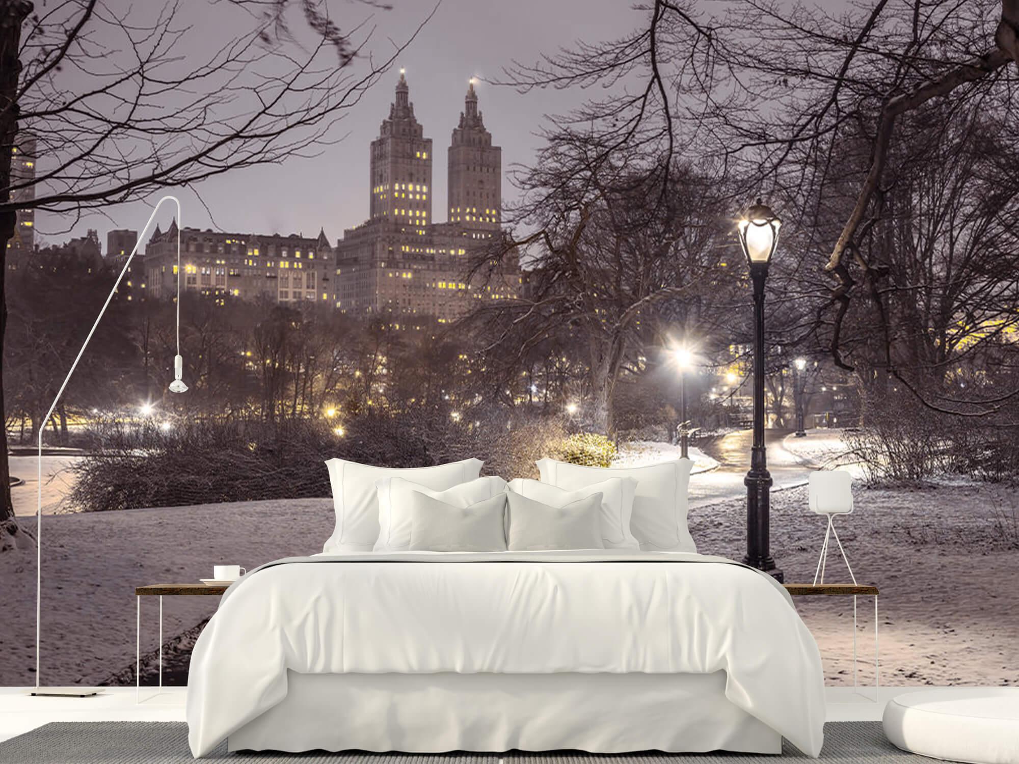 Snowy Central Park 11