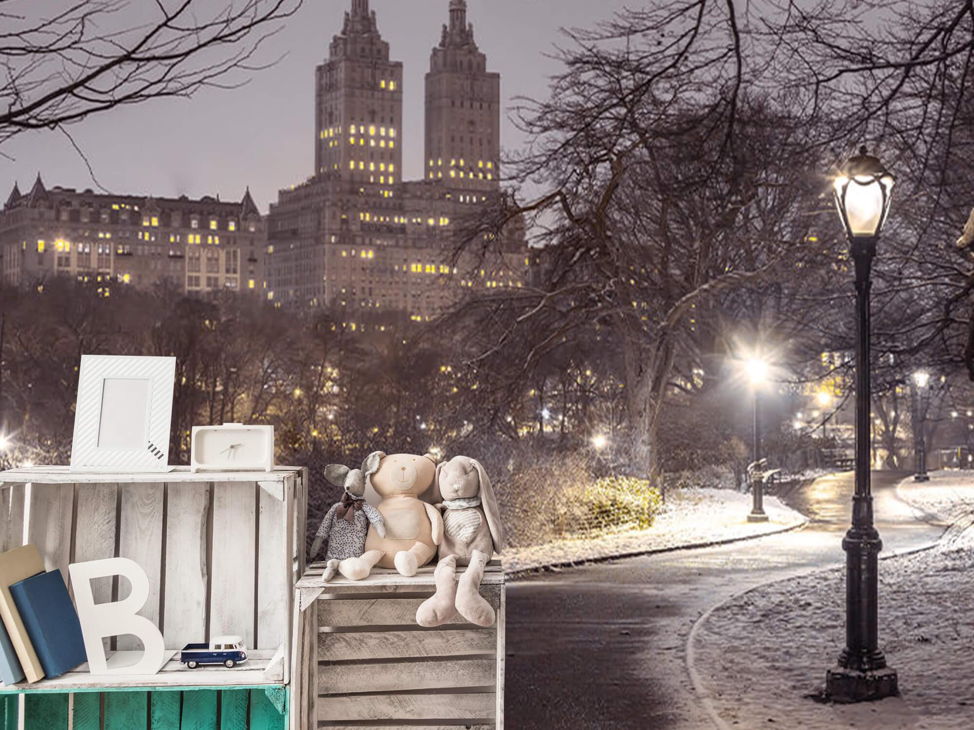 Snowy Central Park 13