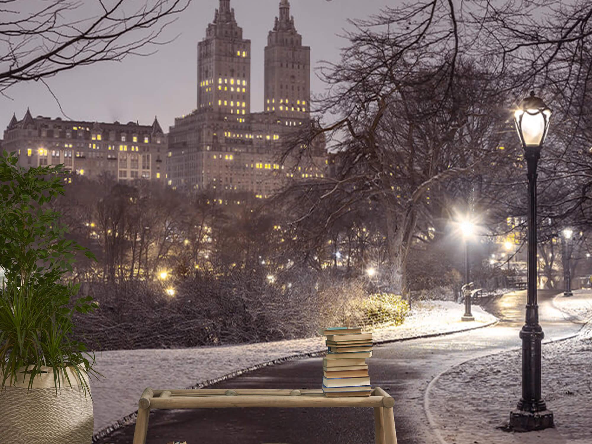 Snowy Central Park 12