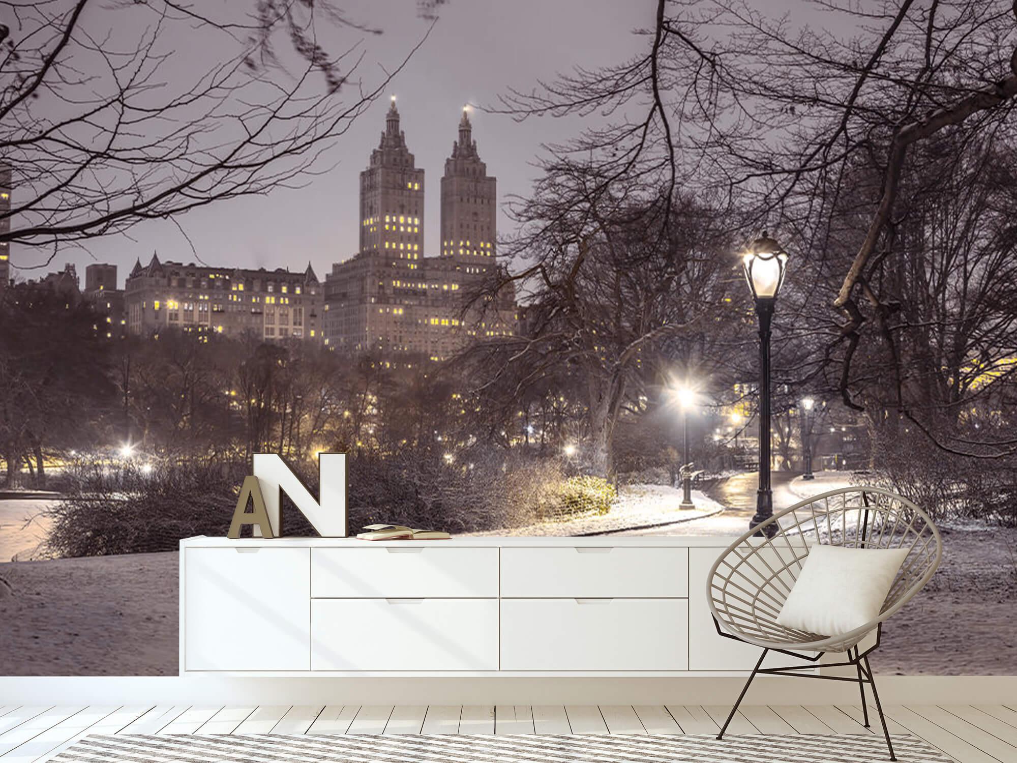 Snowy Central Park 14