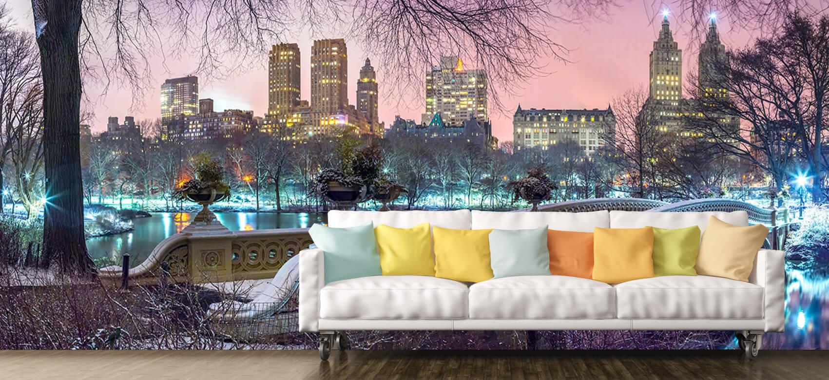Colourful Central Park 6