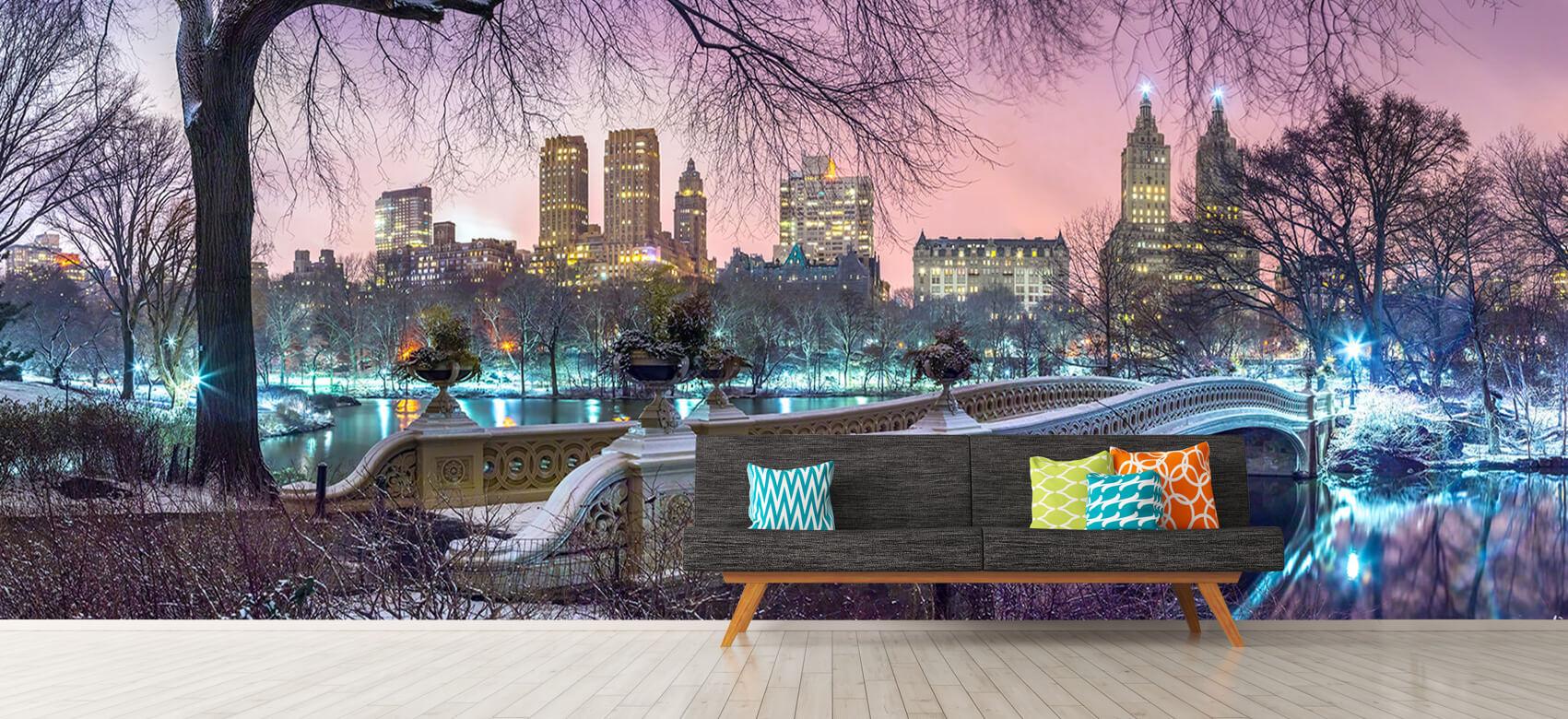 Colourful Central Park 7