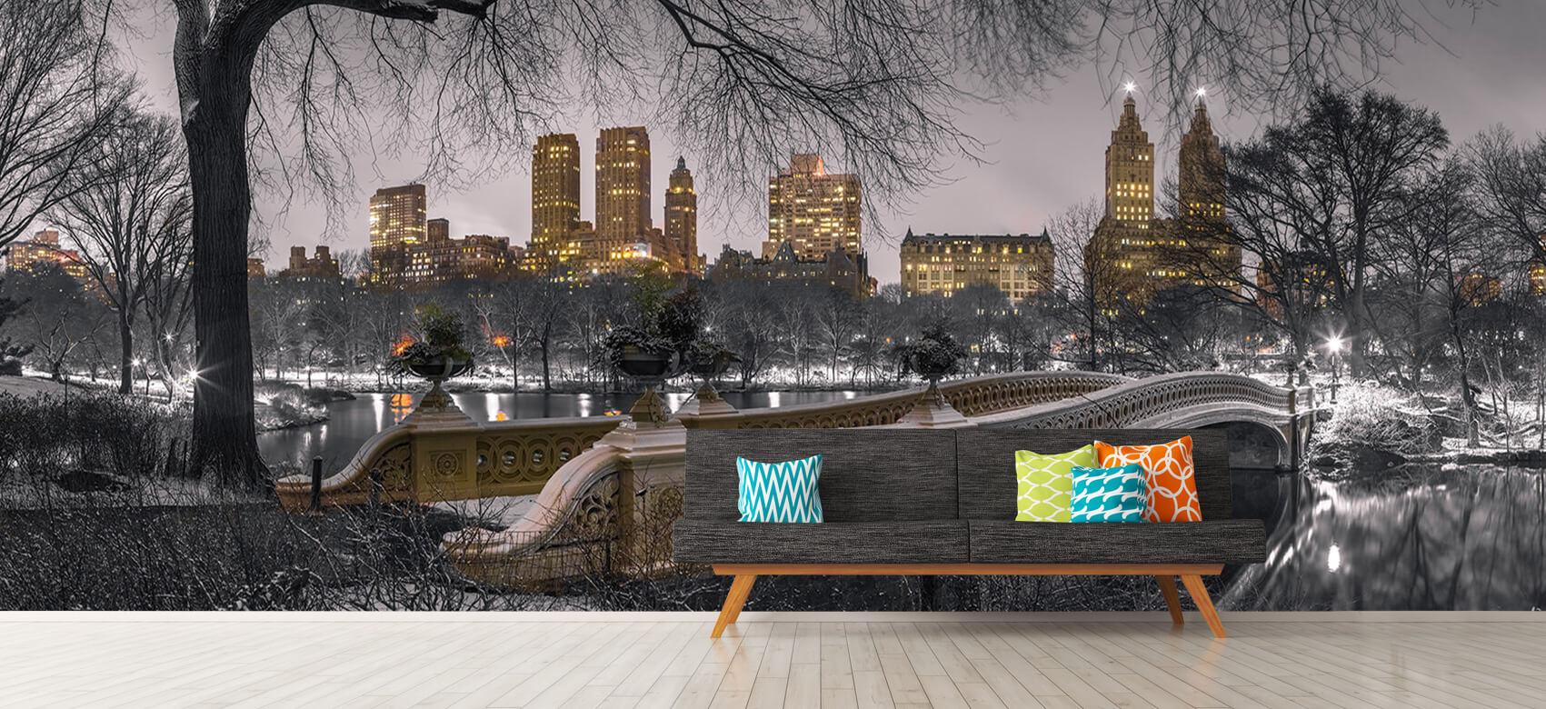 Central park and Manhattan 7
