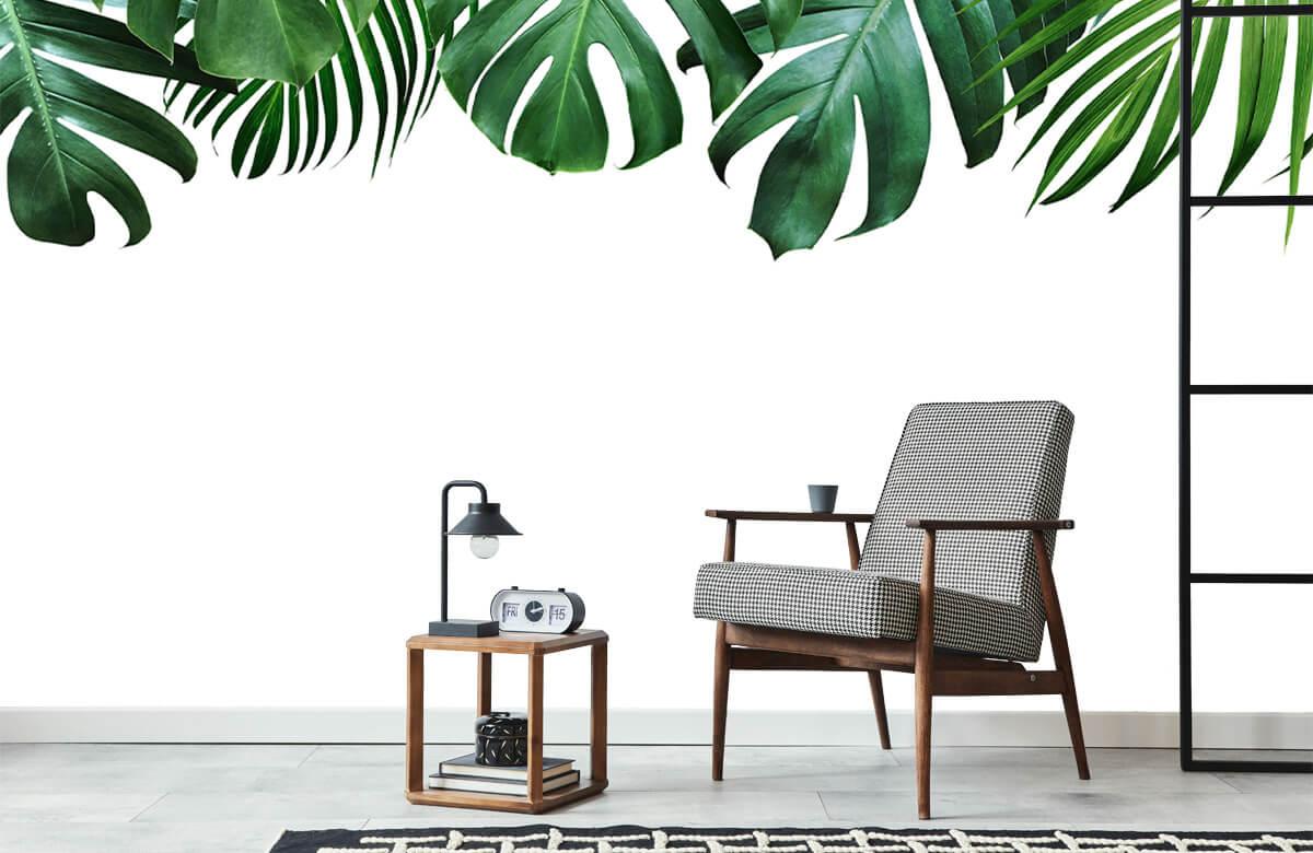 Tropical plants 7