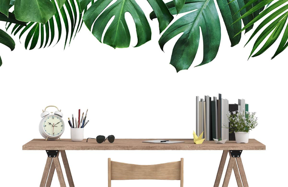 Tropical plants 9