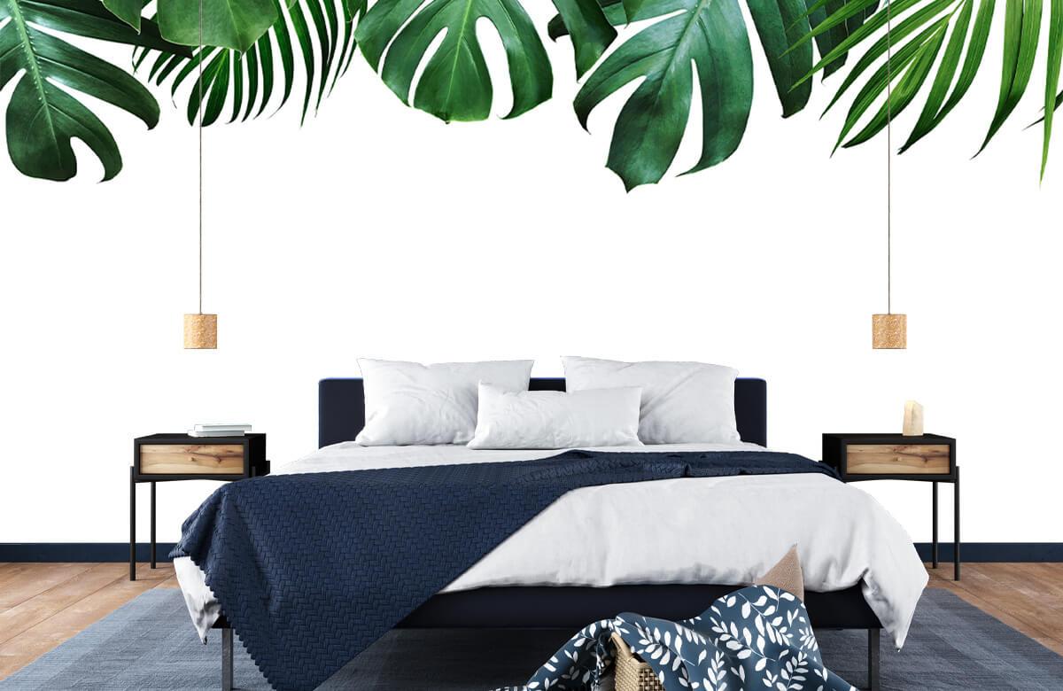 Tropical plants 5